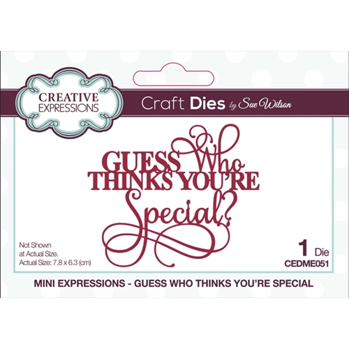 Creative Expressions GUESS WHO THINKS YOURE SPECIAL Sue Wilson Mini Expressions Die cedme051 Preview Image