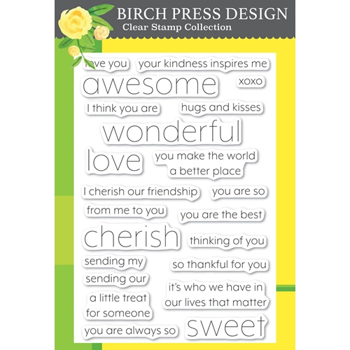 Birch Press Design YOU ARE AWESOME Clear Stamps cl8151 Preview Image