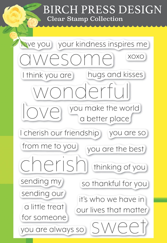 Birch Press Design YOU ARE AWESOME Clear Stamps cl8151 zoom image