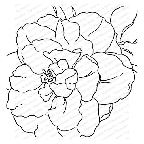 Impression Obsession Cling Stamp CAMELLIA Create A Card CC377* Preview Image
