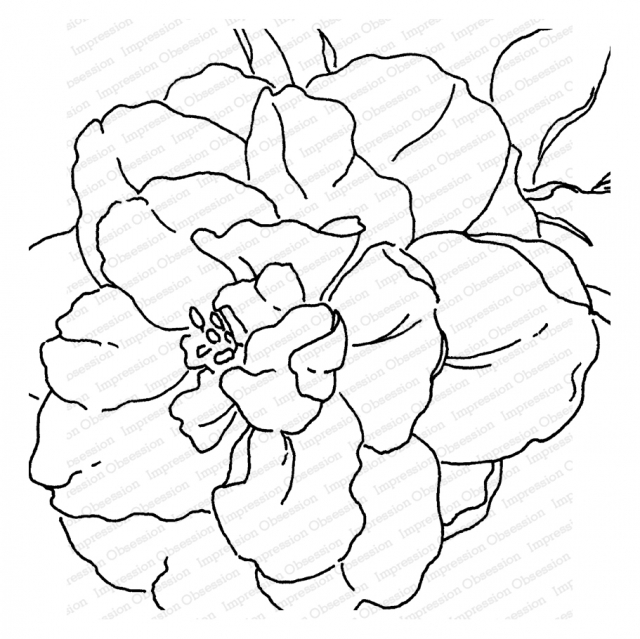 Impression Obsession Cling Stamp CAMELLIA Create A Card CC377* zoom image
