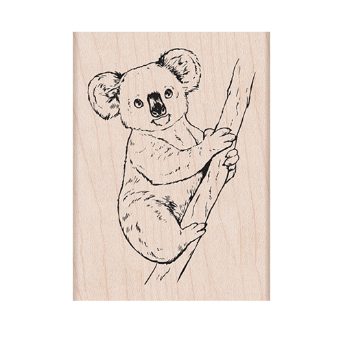Hero Arts Rubber Stamp KOALA ON BRANCH H6431 Preview Image