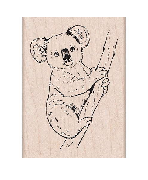 Hero Arts Rubber Stamp KOALA ON BRANCH H6431 zoom image
