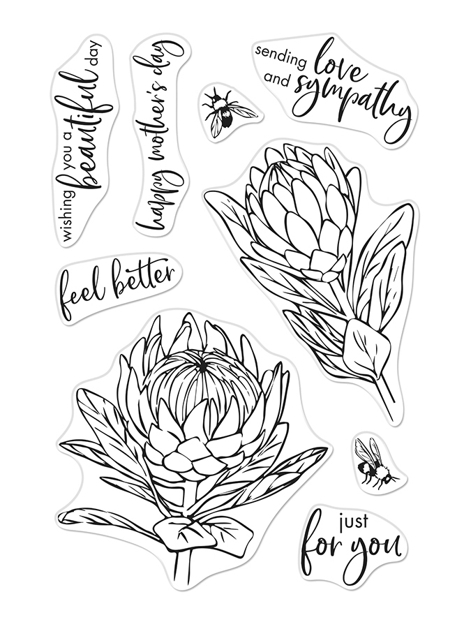 Hero Arts Clear Stamps PROTEA AND FLOWERS CM448 zoom image