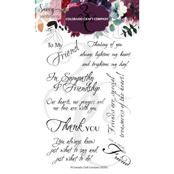 Colorado Craft Company Savvy Sentiments FRIENDSHIP GREETINGS Clear Stamps SS305