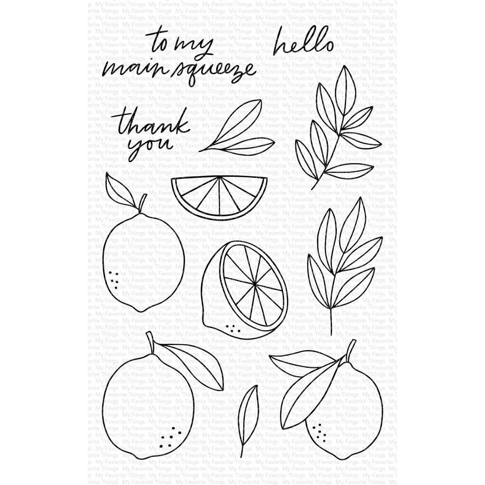 My Favorite Things MAIN SQUEEZE Clear Stamps cs475 zoom image