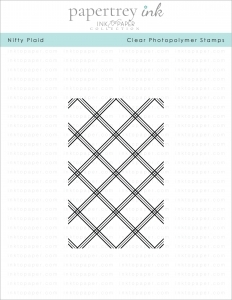 Papertrey Ink NIFTY PLAID Clear Stamp 1166