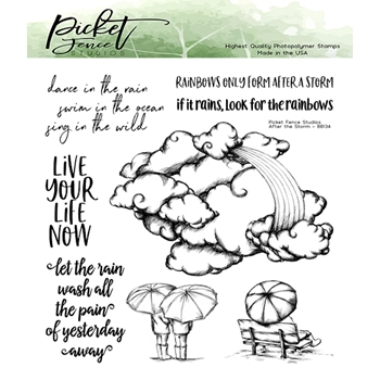 Picket Fence Studios AFTER THE STORM Clear Stamps bb134