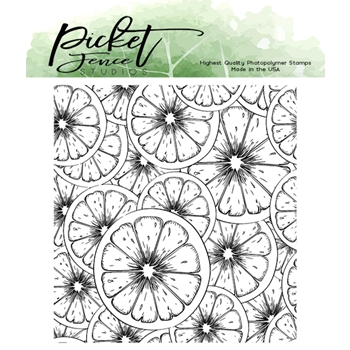 Picket Fence Studios FRUITYLICIOUS Clear Stamp f139