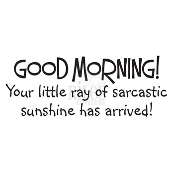 Riley And Company Funny Bones SARCASTIC SUNSHINE Cling Stamp RWD-816