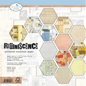 Elizabeth Craft Designs REMINISCENCE 12x12 Paper c002