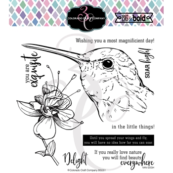 Colorado Craft Company Big and Bold HUMMINGBIRD DELIGHT Clear Stamps BB281