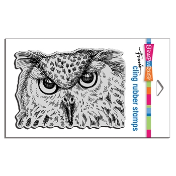 Stampendous Cling Stamp OWL EYES crr322