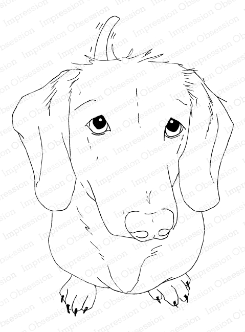 Impression Obsession Cling Stamp DACHSHUND H13915 zoom image