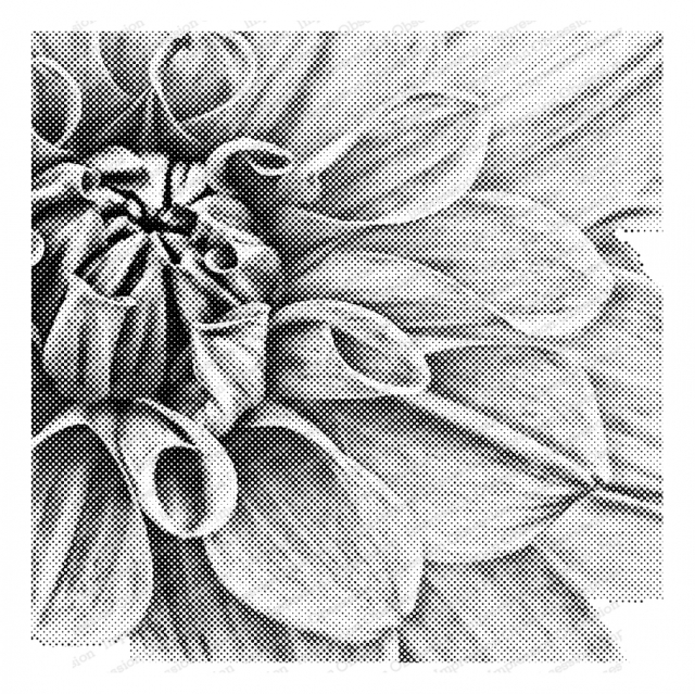 Impression Obsession Cling Stamp PIXEL DAHLIA Create A Card CC401 zoom image