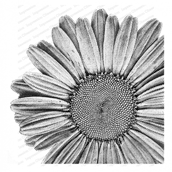 Impression Obsession Cling Stamp PIXEL DAISY Create A Card CC402
