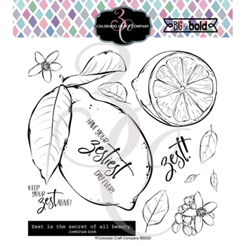 Colorado Craft Company Big and Bold LEMON ZEST Clear Stamps BB309