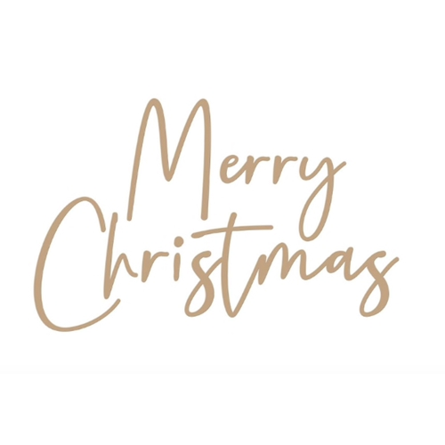 Spellbinders Stylish Script Merry Christmas Glimmer Hot Foil Plate