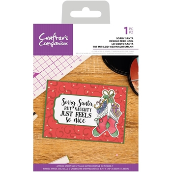 Crafter's Companion SORRY SANTA Clear Acrylic Stamp cccastsrs*