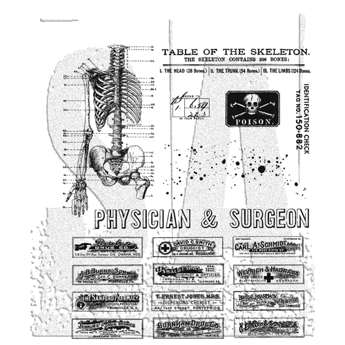 Tim Holtz Cling Rubber Stamps 2020 EXAMINATION CMS412 Preview Image