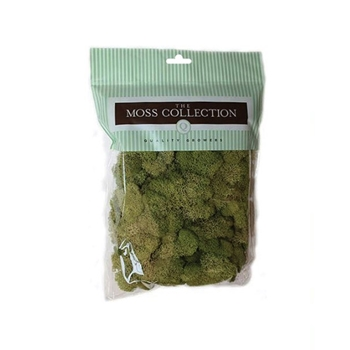 Quality Growers ASHLAND MOSS Embellishment 284153