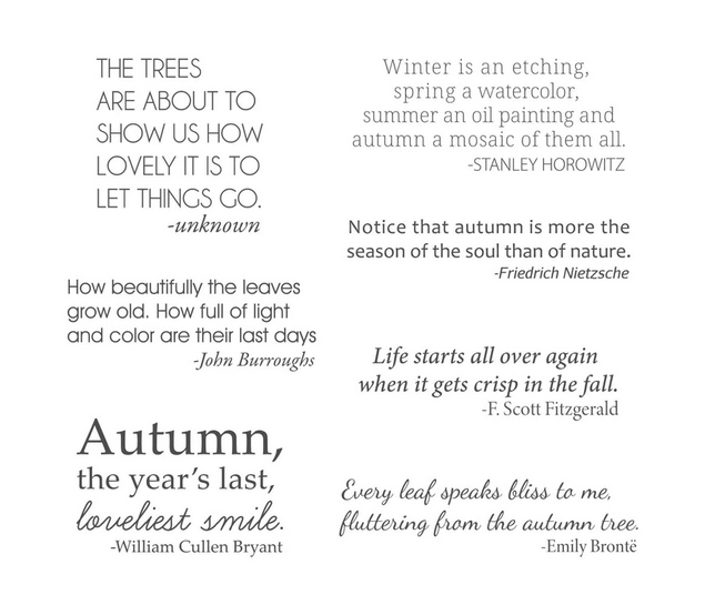 STP-024 Spellbinders AUTUMN QUOTES Clear Stamps  zoom image