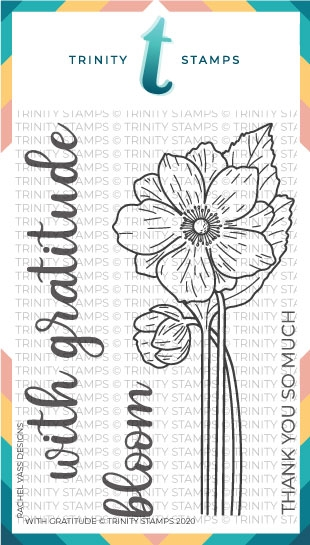 Trinity Stamps WITH GRATITUDE Clear Stamp Set tps074* zoom image