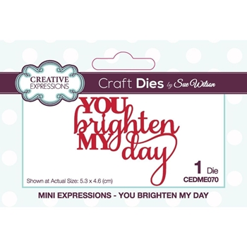 Creative Expressions YOU BRIGHTEN MY DAY Sue Wilson Mini Expressions Dies cedme070