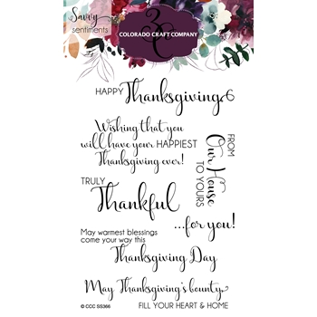 Colorado Craft Company Savvy Sentiments TRULY THANKFUL Clear Stamps SS366