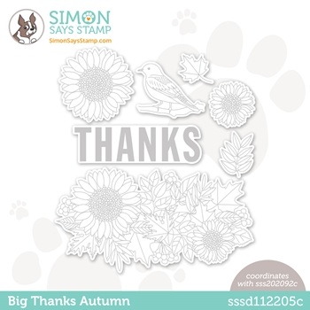 Simon Says Stamp BIG THANKS AUTUMN Wafer Dies sssd112205c Diecember