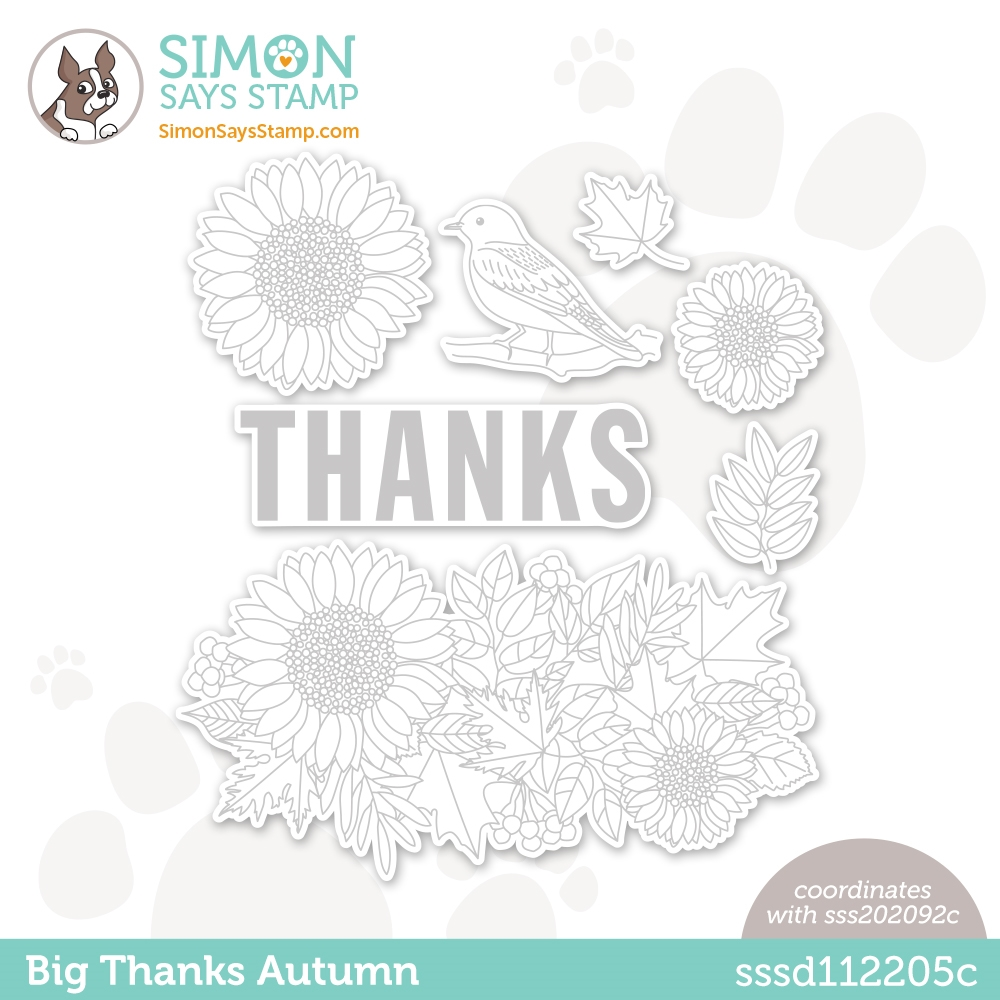 Simon Says Stamp BIG THANKS AUTUMN Wafer Dies sssd112205c Diecember zoom image