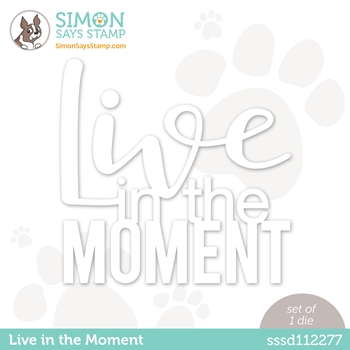 Simon Says Stamp LIVE IN THE MOMENT Wafer Die sssd112277 Diecember