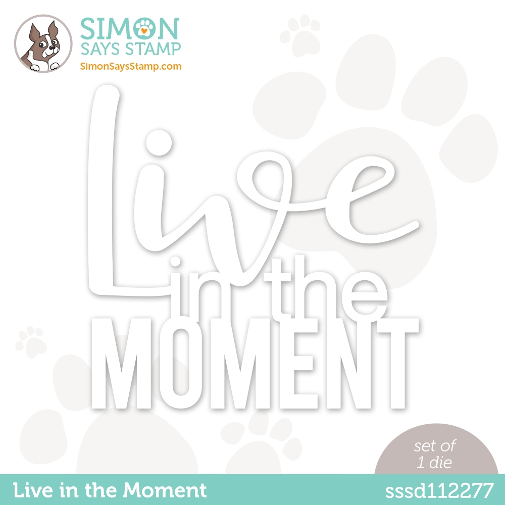 Simon Says Stamp LIVE IN THE MOMENT Wafer Die sssd112277 Diecember zoom image