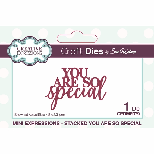Creative Expressions STACKED YOU ARE SO SPECIAL Sue Wilson Mini Expressions Die cedme079 Preview Image