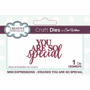 Creative Expressions STACKED YOU ARE SO SPECIAL Sue Wilson Mini Expressions Die cedme079