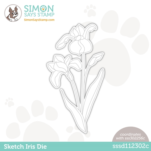 Simon Says Stamp SKETCH IRIS Wafer Die sssd112302c Hello Beautiful Preview Image