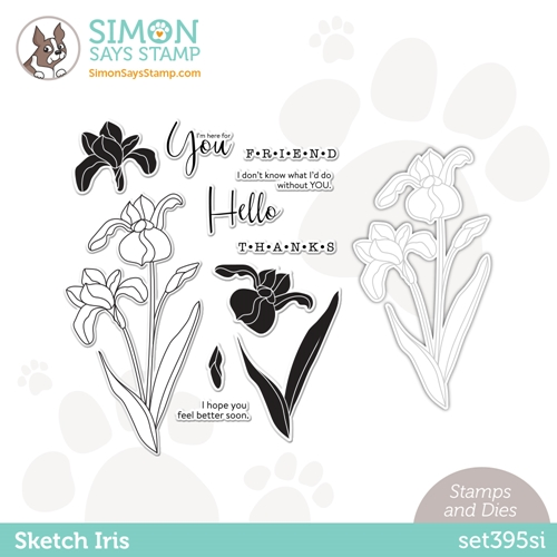 Simon Says Stamps and Die SKETCH IRIS set395si Hello Beautiful Preview Image