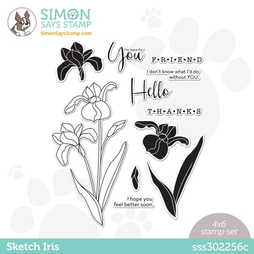 Simon Says Clear Stamps SKETCH IRIS sss302256c Hello Beautiful Preview Image