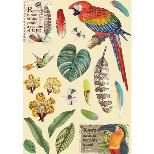 Stamperia AMAZONIA PARROT Colored Wooden Shapes klsp095 Preview Image