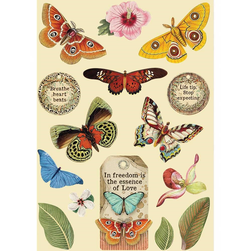 Stamperia AMAZONIA BUTTERFLY Colored Wooden Shapes klsp093 zoom image