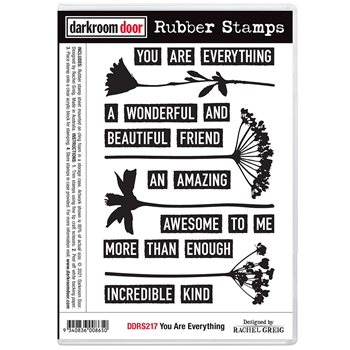 Darkroom Door Cling Stamps YOU ARE EVERYTHING ddrs217