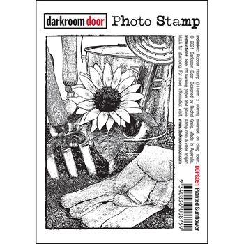 Darkroom Door Cling Stamps PLANTED SUNFLOWER ddps051