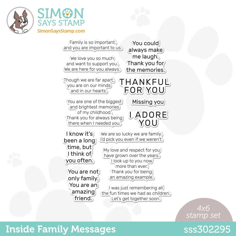 Simon Says Clear Stamps INSIDE FAMILY MESSAGES sss302295 All The Feels zoom image