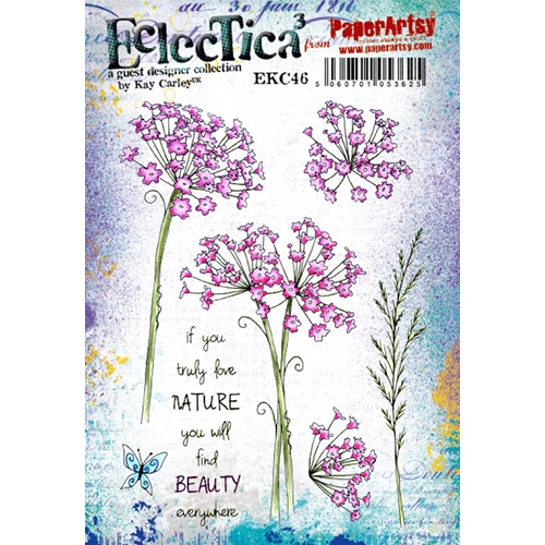 Paper Artsy ECLECTICA3 Kay Carley 46 Cling Stamp ekc46 Preview Image
