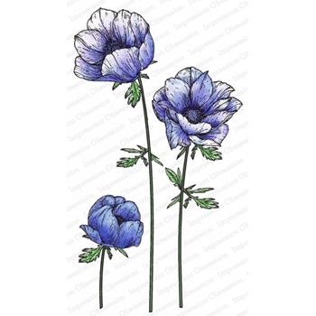 Impression Obsession Cling Stamp ANEMONE 3257 LG