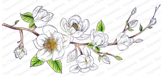 Impression Obsession Cling Stamp MAGNOLIA 3256 LG zoom image