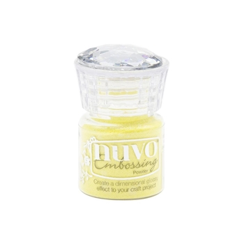 Tonic HAPPY DAZE Nuvo Embossing Powder 623n