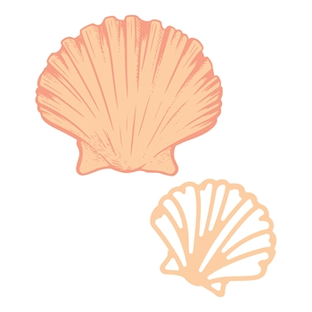 Couture Creations FLAT SEASHELL Mini Stamp And Die Set co728330