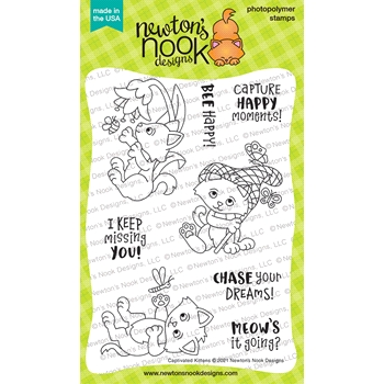Newton's Nook Designs CAPTIVATED KITTENS Clear Stamps NN2104S01