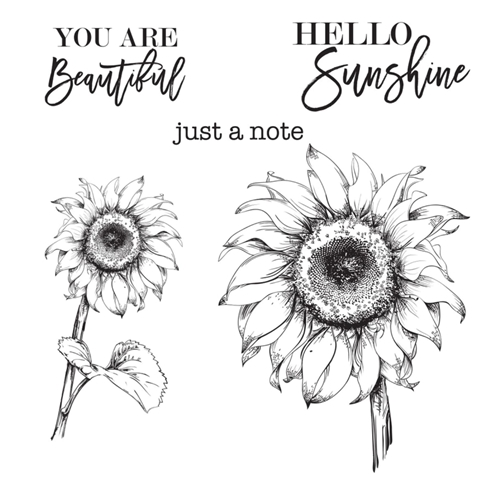 STP 017 Spellbinders HELLO SUNFLOWER Clear Stamps Preview Image